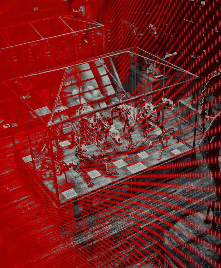 digitalising museums